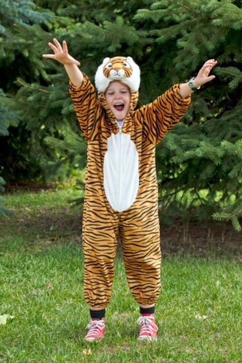 boy_in_a_tiger_costume